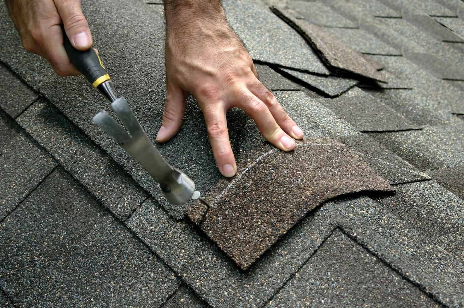 Roofing Blog - Roofing Advice - Roofing Articles - Castile Roofing ...